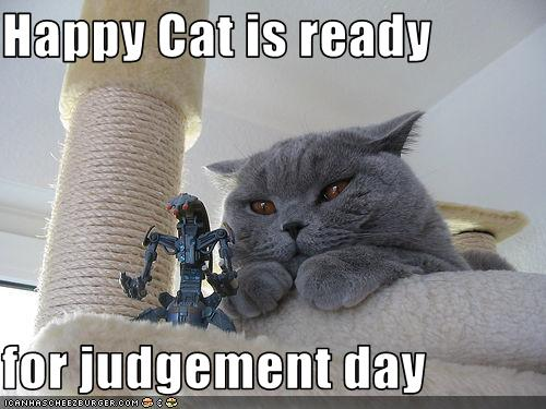Photo of black cat glaring with text Happy Cat is ready for judgement day