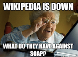 Screenshot of meme featuring an elderly woman looking at computer with text Wikipedia is Down, What Do They Have Against Soap?