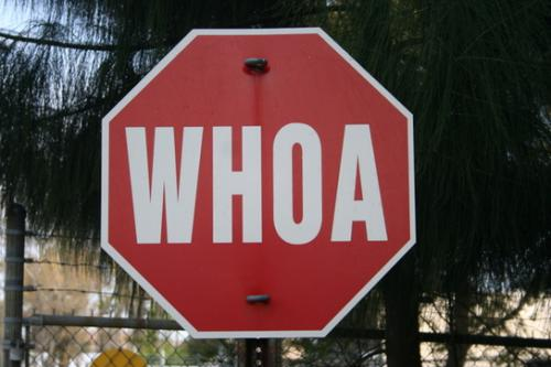 Stop sign with the word WHOA in place of STOP