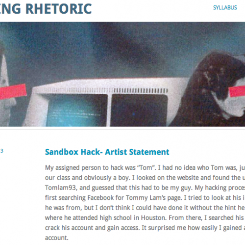 Screenshot of course website with partial text of a student's artist statement