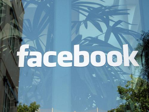 Facebook's wordmark floating in front of a blue background with plants